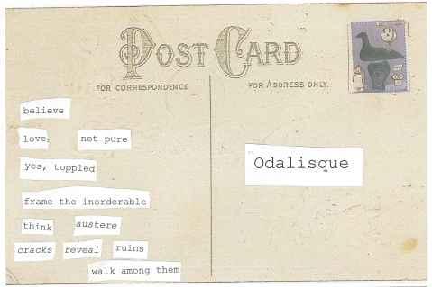 Postcard back--Black Swan